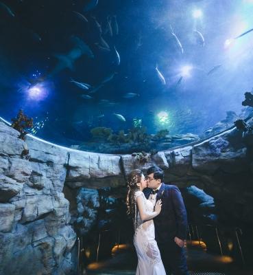 Claudia & Tom Wedding Day